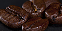 IMG_5282_1_kaffeebohnen_makro_astonishing_pictures_teaser_website